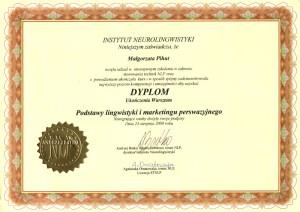 certyfikat-nlp-big